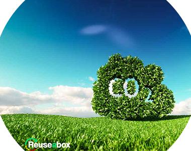 Achieve Net Zero Carbon