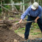 One Tree Planted. Two Million Tree Challenge improves soil health