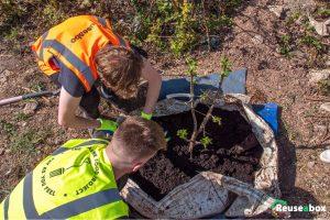 The Reuseabox 2 Million Tree Challenge